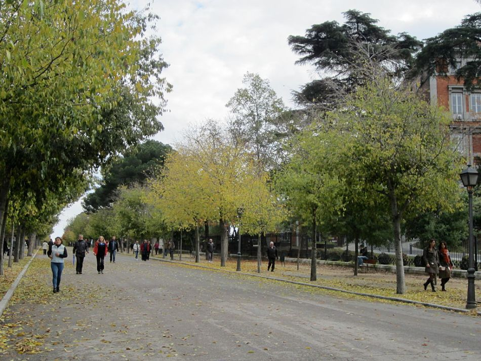 Urban_park,_Madrid's_Parque_del_Retiro_(6382398435)