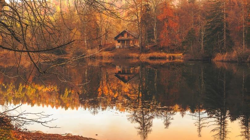 autumn-2021154_1280